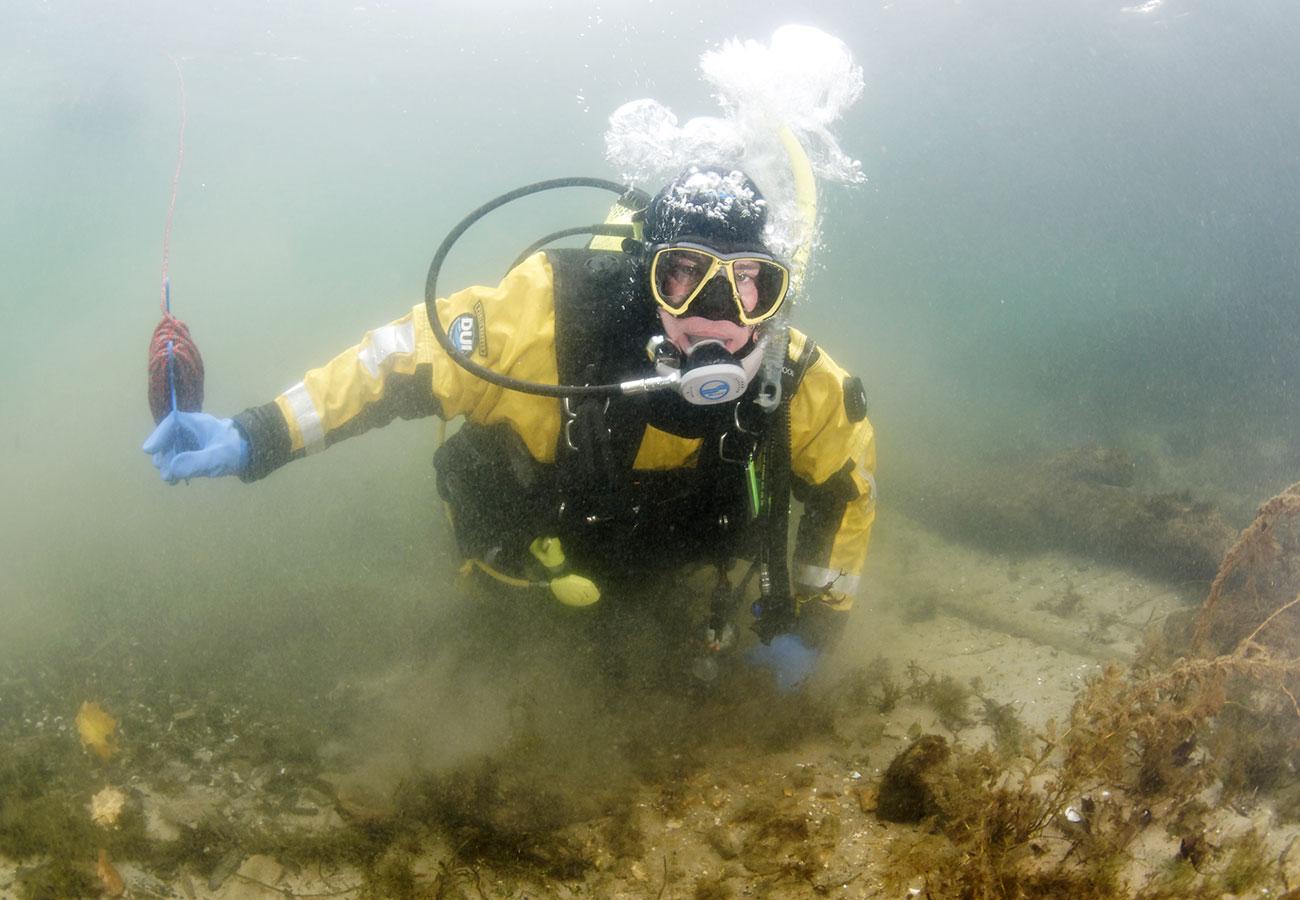 Neptune's Dive Club